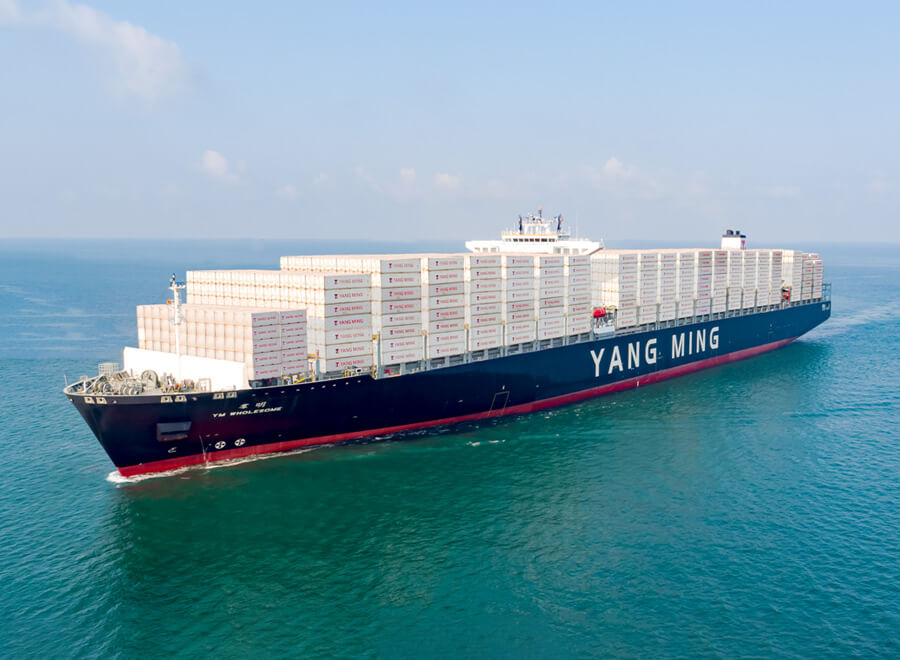 Johnson Stevens Ltd. Yang Ming Lines ship out at sea